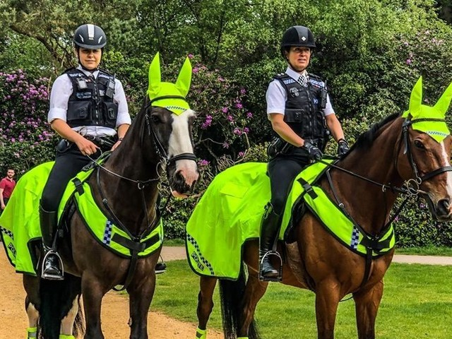 How horses are helping Surrey Police tackle rural crime
