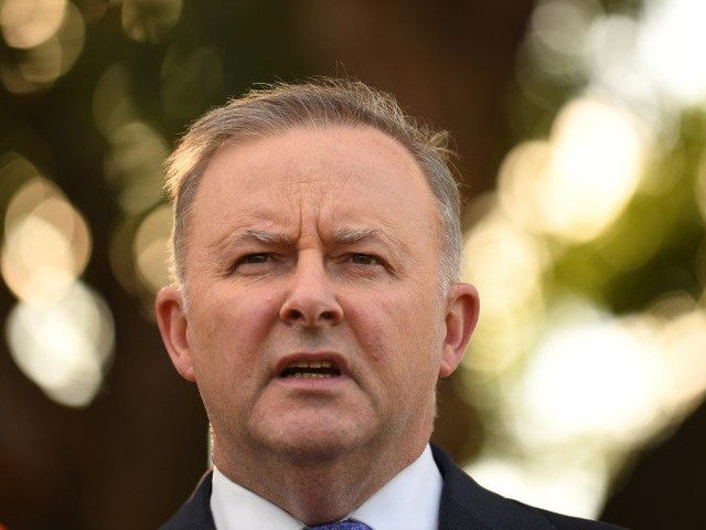 Albanese will have to confront a collapse in the progressive vote