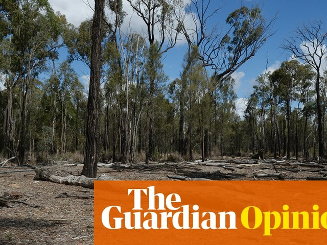 Gamil means no: don't be quiet while mining threatens our collective future | Jared Field