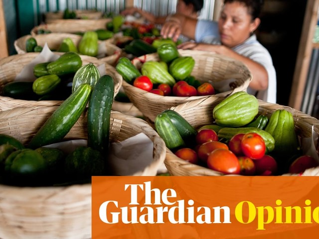 Small farmers have the answer to feeding the world. Why isn't the UN listening? | Elizabeth Mpofu and Henk Hobbelink