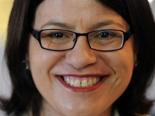 The highs, lows and sudden demise of Jenny Mikakos's political career