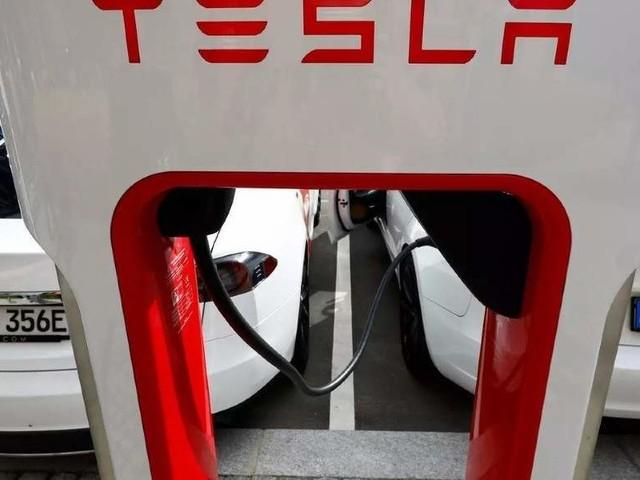 Tesla puts brake on Shanghai land buy: Sources