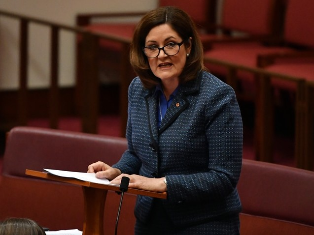 Medevac critic and Liberal senator appointed to chair parliamentary human rights committee
