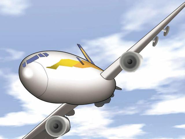 AI plane flies Amritsar-Dubai with just 1 passenger