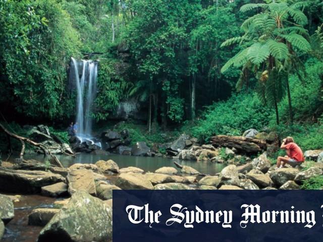 Boy's body found at popular Gold Coast hinterland swimming hole