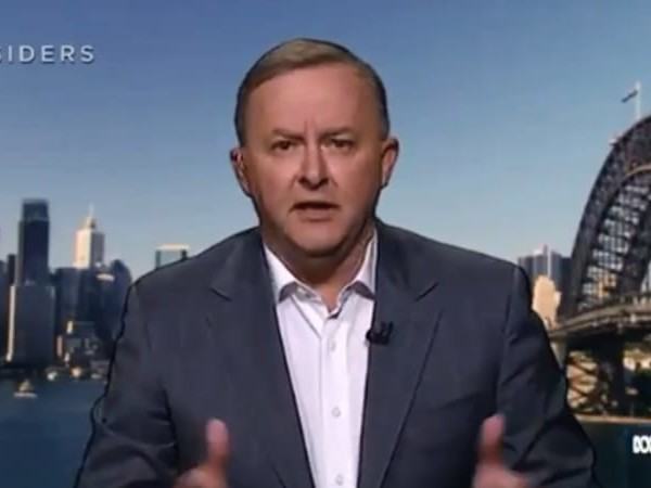 'The people with guns have a responsibility': Albanese demands explanation over Israel vote