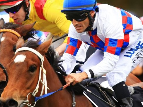 Lady Jivago set to break long drought