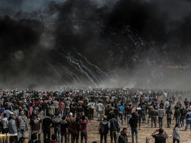 On solidarity with Gazans