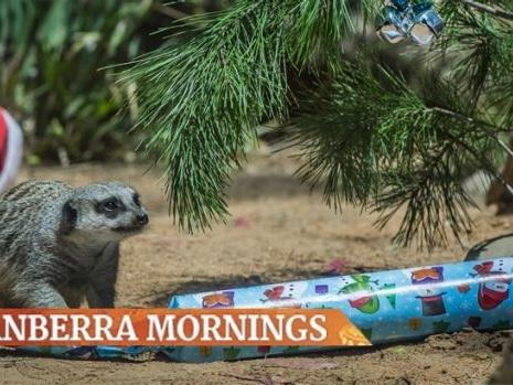 Canberra mornings: Friday, December 23, 2016