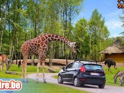 Monde Sauvage Safari Parc