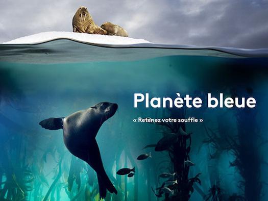 Ce soir sur France 2 : « Planète bleue » (épisode 2, vidéo)