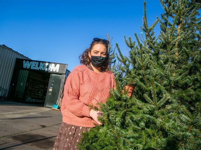 """Verkoop kerstbomen nu al goed op dreef: """"Thuis extra gezellig maken"""""""