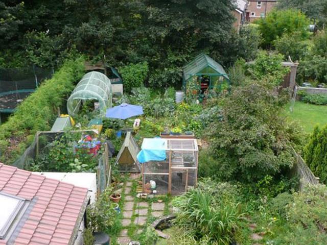 Quelles sont les meilleures techniques pour mettre en place votre jardin de permaculture ?