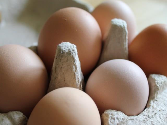 Intoxication : rappel de pâtes Panzani et d'œufs Les Poulettes