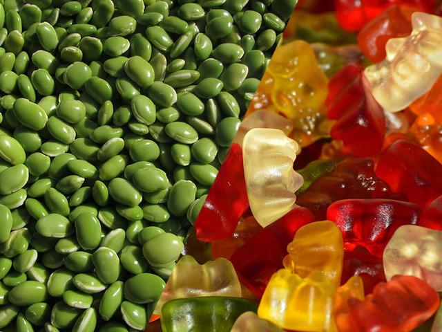 QUIZ : Savez-vous quels animaux se trouvent dans ces produits alimentaires ?