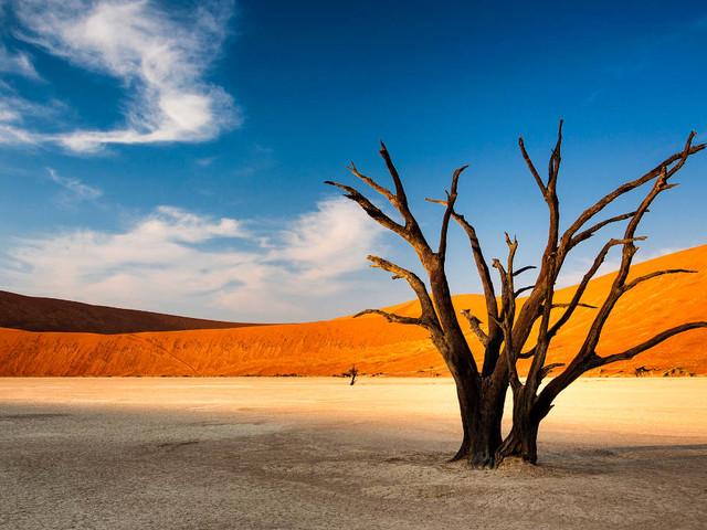 Top 5 des choses à voir et à faire en Namibie