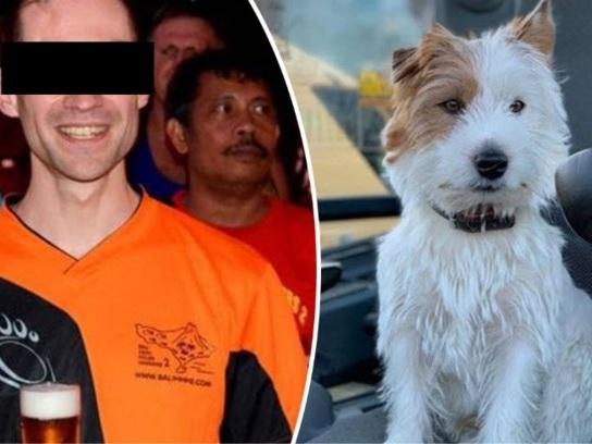Jogger die hondje Dribbel doodstak, dient klacht in na doodsbedreigingen op sociale media