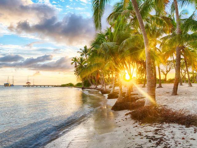 Les incontournables à ne pas manquer en Guadeloupe