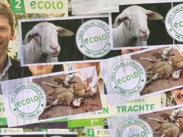 Des affiches d'Ecolo vandalisées par des militants pro-animaux