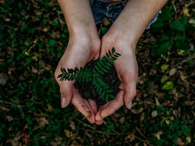 Journée de la Terre : quand la tech nous aide à être écolos