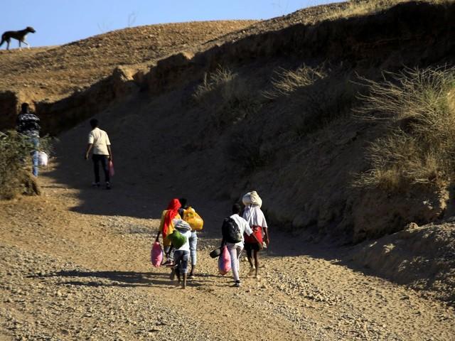 Le Conseil de sécurité de l'Onu préoccupé par la situation au Tigré