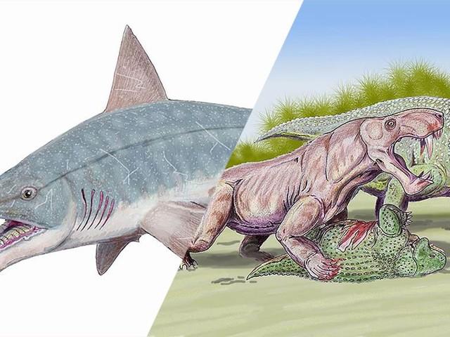 10 animaux stupéfiants qui ont foulé la Terre bien avant les dinosaures