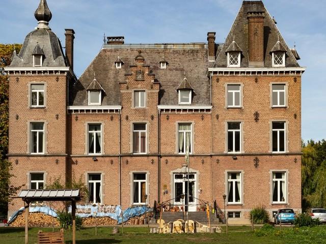 Le SPF Finances met le château Van Rivieren aux enchères