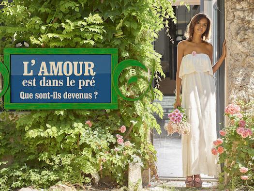 Audiences prime 19 août 2019 : Retour gagnant pour « L'amour est dans le pré » devant « Camping Paradis »