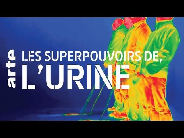 Ce documentaire fascinant dévoile les pouvoirs insoupçonnés de votre urine