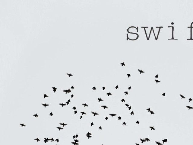 Poetry: In 'Swift,' David Baker's Poetry Stitches the Fractured World Into Art