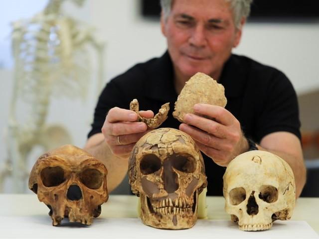 Beenderen van onbekende oermens gevonden in Israël