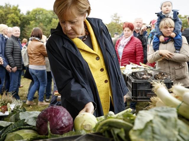 Duitsers kiezen vooral coalitiepartner voor Merkel