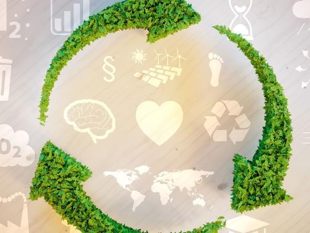 La compensation carbone : vraiment utile ?