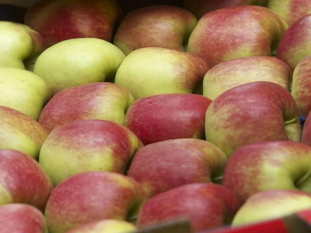 Les secteurs de la viande bovine, des pommes et des poires reconnus en crise