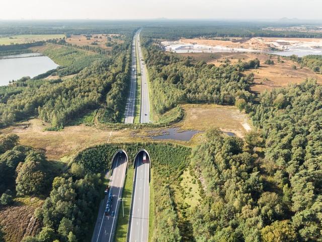 """Het grote Limburgse natuurrapport: """"De grootste brok is nog altijd privébezit"""""""