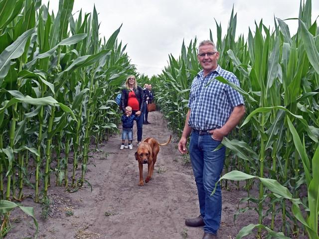 Vanaf nu kan je weer verdwalen tussen maïs van twee meter hoog in Peer