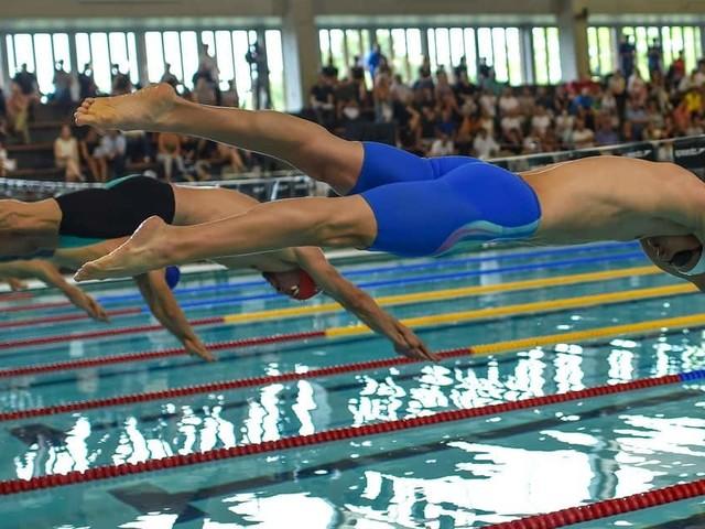 Le président de la Fédération Royale Belge de natation démissionne