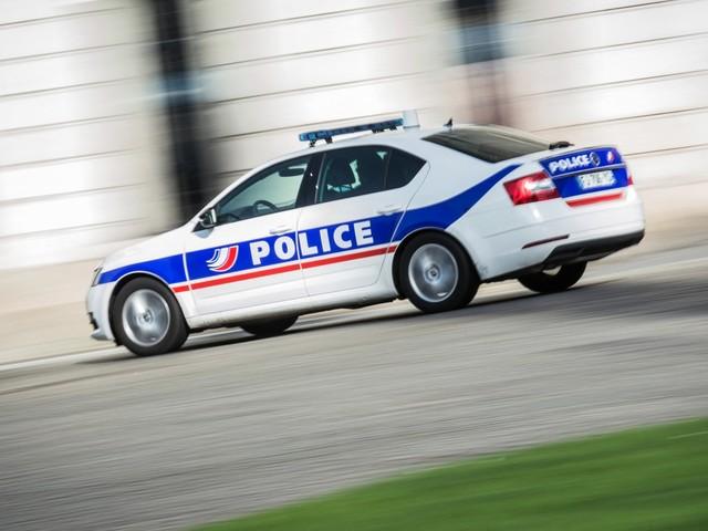 Yvelines : une fillette et deux femmes attaquées par des chiens