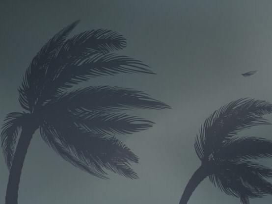 Ouragan Maria en Guadeloupe : l'état de « catastrophe naturelle » sera « signé samedi » (Philippe)