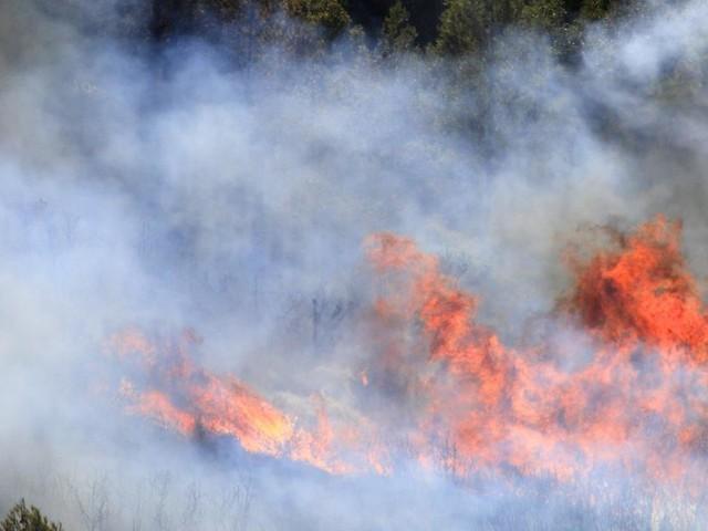 Gros incendie dans le sud de la France: une centaine d'hectares brûlés, le feu circonscrit
