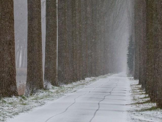 Météo: un dimanche avec des conditions encore hivernales, avant un lundi plus sec