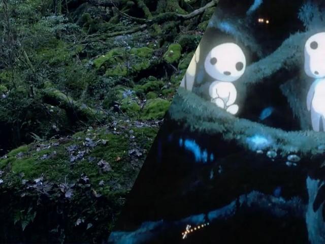 Les sublimes paysages des films de Miyazaki s'inspirent de la nature japonaise, la preuve en vidéo