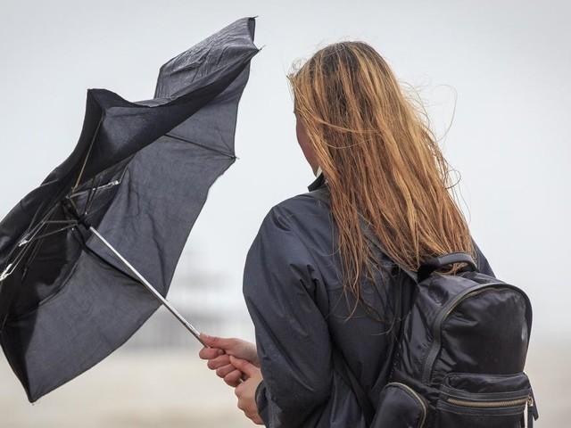 Météo: des bourrasques de vent jusqu'à 80 km/h ce samedi, les prévisions région par région