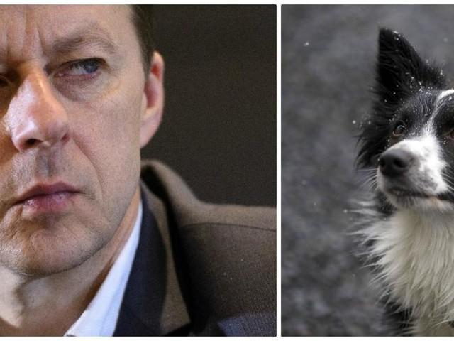 Fausse taxe sur les animaux de compagnie: Carlo Di Antonio est furieux !