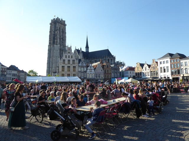 Recordopkomst voor vegetarische picknick in Mechelen
