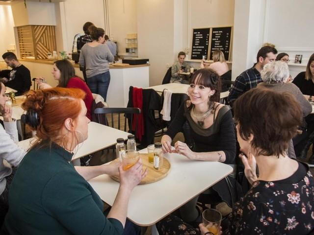 Liège: des chats au zinc du Merlix Cats Café