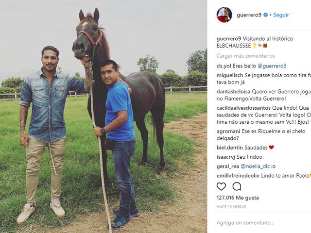 Suspenso, Guerrero visita seu cavalo de corrida premiado no Peru