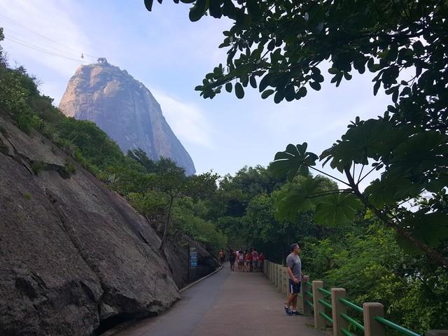 Exploring the Best Parks in Rio de Janeiro