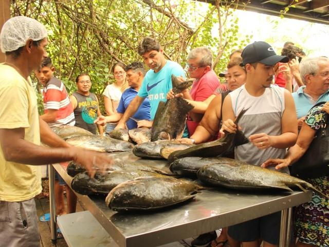 Black Friday do Pirarucu: descontos de 11% a 50% no pescado manejado na sede da FAS a partir de sexta (29)