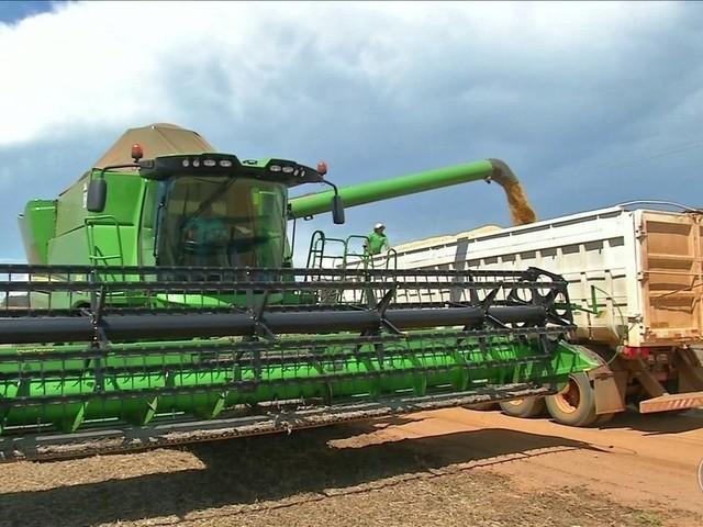 Agricultores de MT colhem soja de olho em plantio do algodão